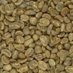 Imagen cafe grano arabica aceptado