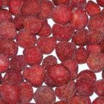 Imagen fresas aceptado