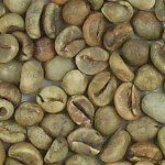 Imagen grano robusta variedad 2 aceptado