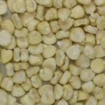maiz de campo blanco - correcto