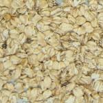 Copo de Avena - Rechazo - Descolorido (Grano muy seco)