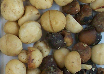 Imagen nuez macadamia entera rechazada 001